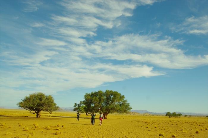 ナミブ砂漠サンセット (3)