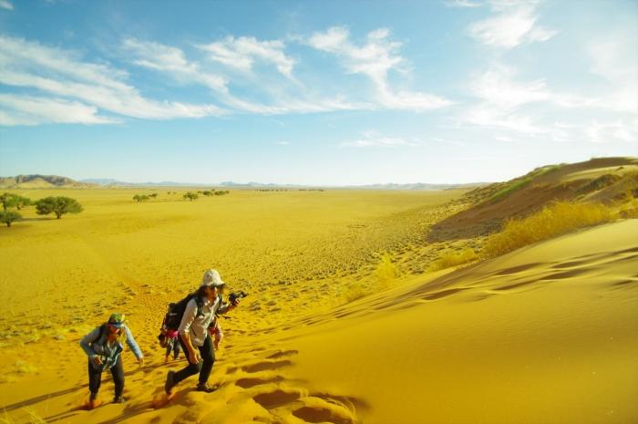 ナミブ砂漠サンセット (5)