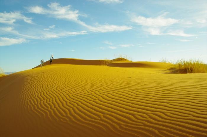 ナミブ砂漠サンセット (9)