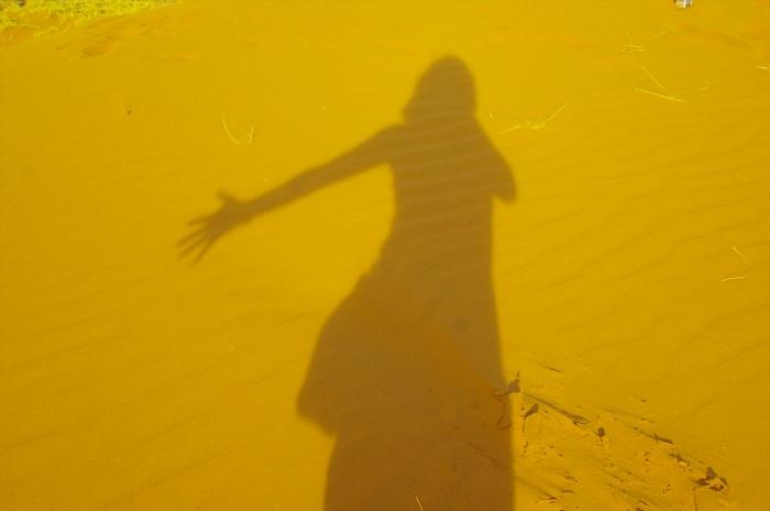 ナミブ砂漠サンセット (14)