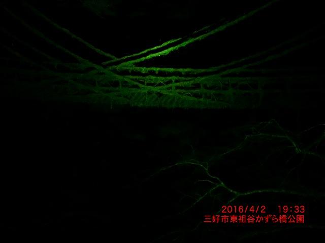CIMG4810_201604070731038cf.jpg