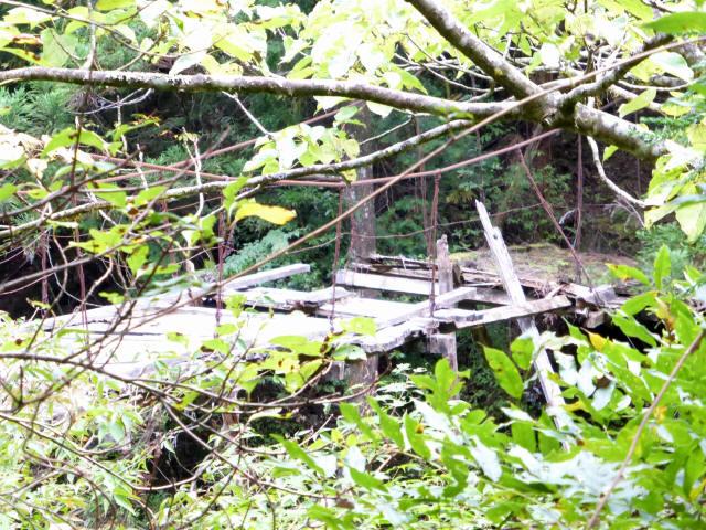 東俣の吊橋8