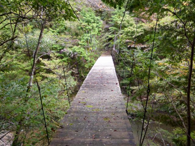 川俣の吊橋4