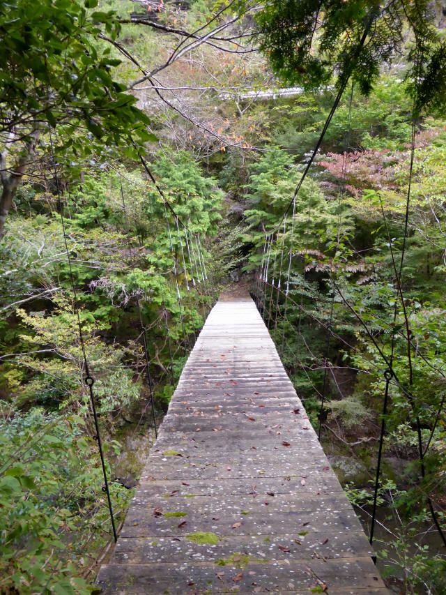 川俣の吊橋6