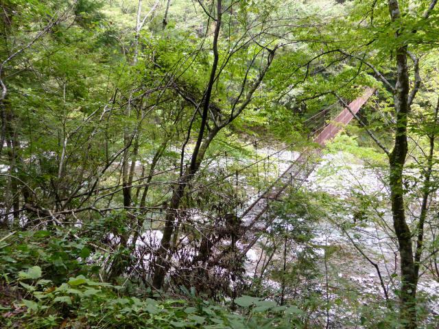 南川の吊橋3a