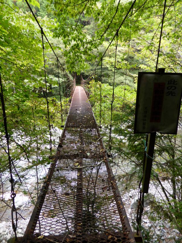 南川の吊橋3c