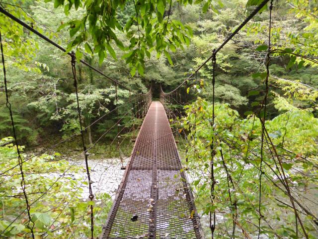 南川の吊橋3d