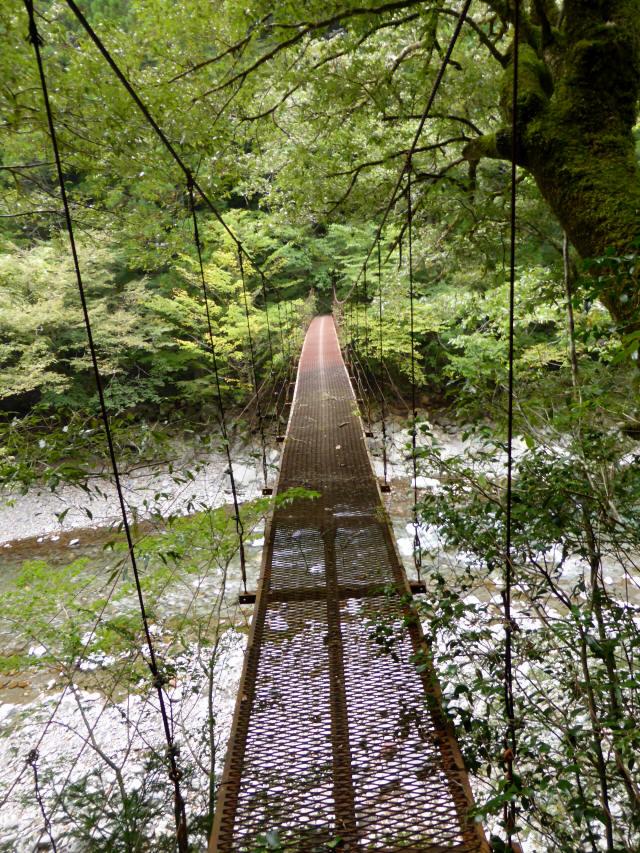 南川の吊橋3i