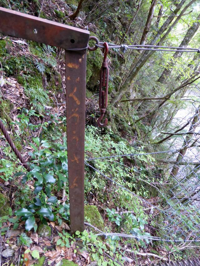 南川の吊橋4d