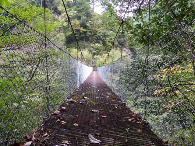 南川の吊橋4e