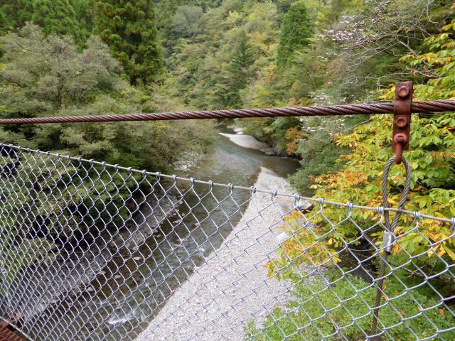南川の吊橋4g