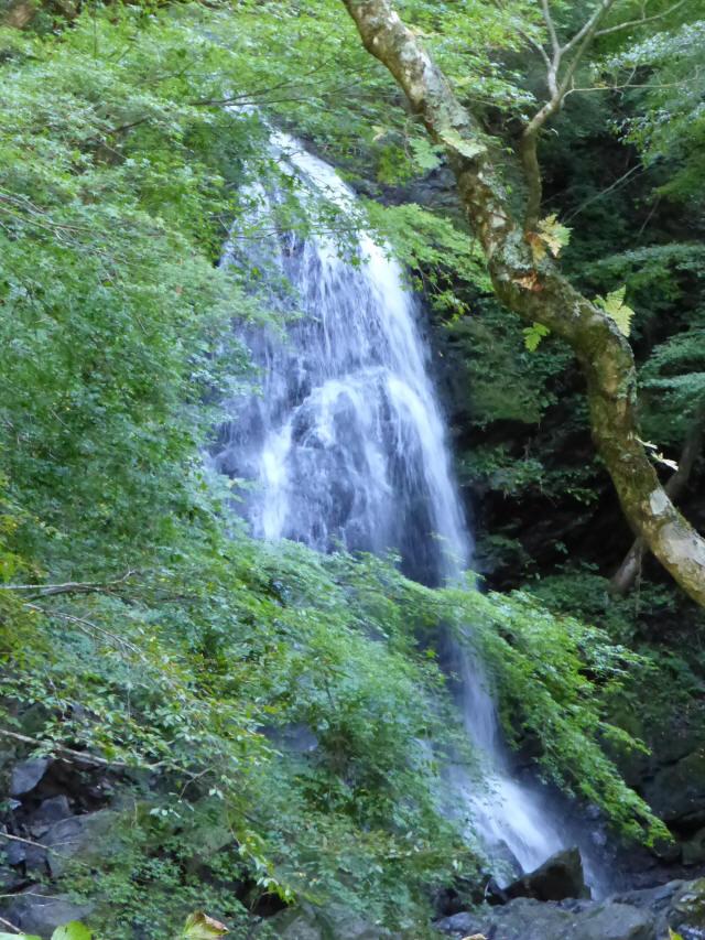 にくぶちの滝1