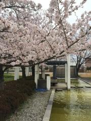 田口不動産 桜 吹上 熊谷