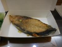魚160405