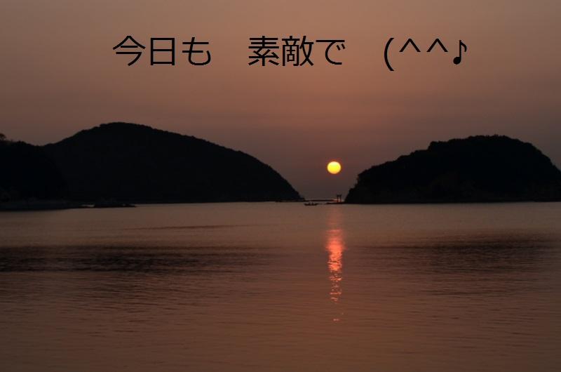DSC_4563 - コピー (2)