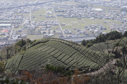 16-03-22_takakusayama-shizuoka-0003.jpg