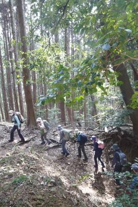 16-03-23_shiratoriyama-yamanashi-0031.jpg
