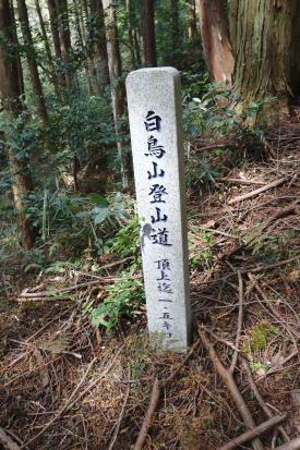 16-03-23_shiratoriyama-yamanashi-0032.jpg