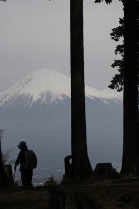 16-03-23_shiratoriyama-yamanashi-0087.jpg