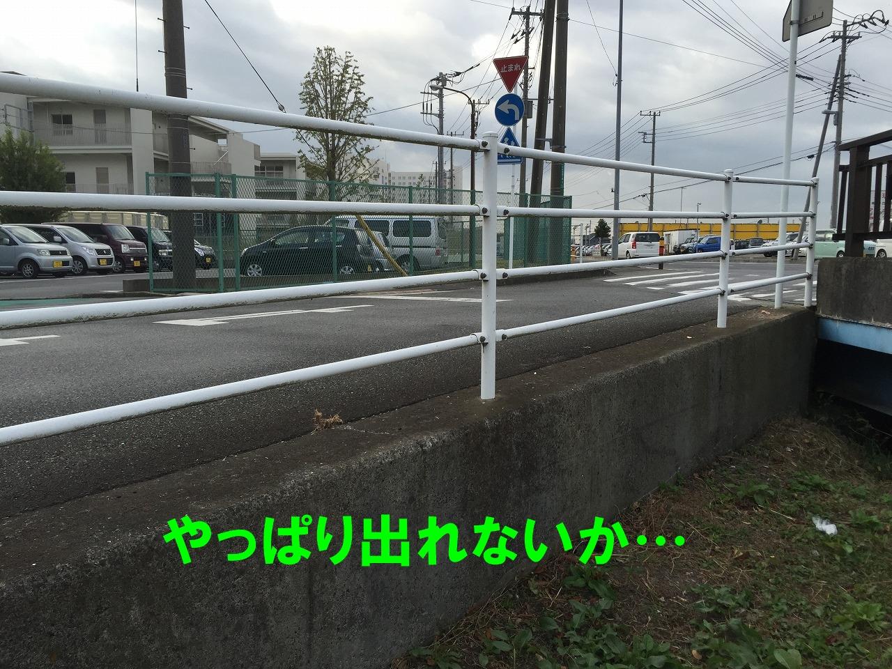 718b-IMG_9595.jpg
