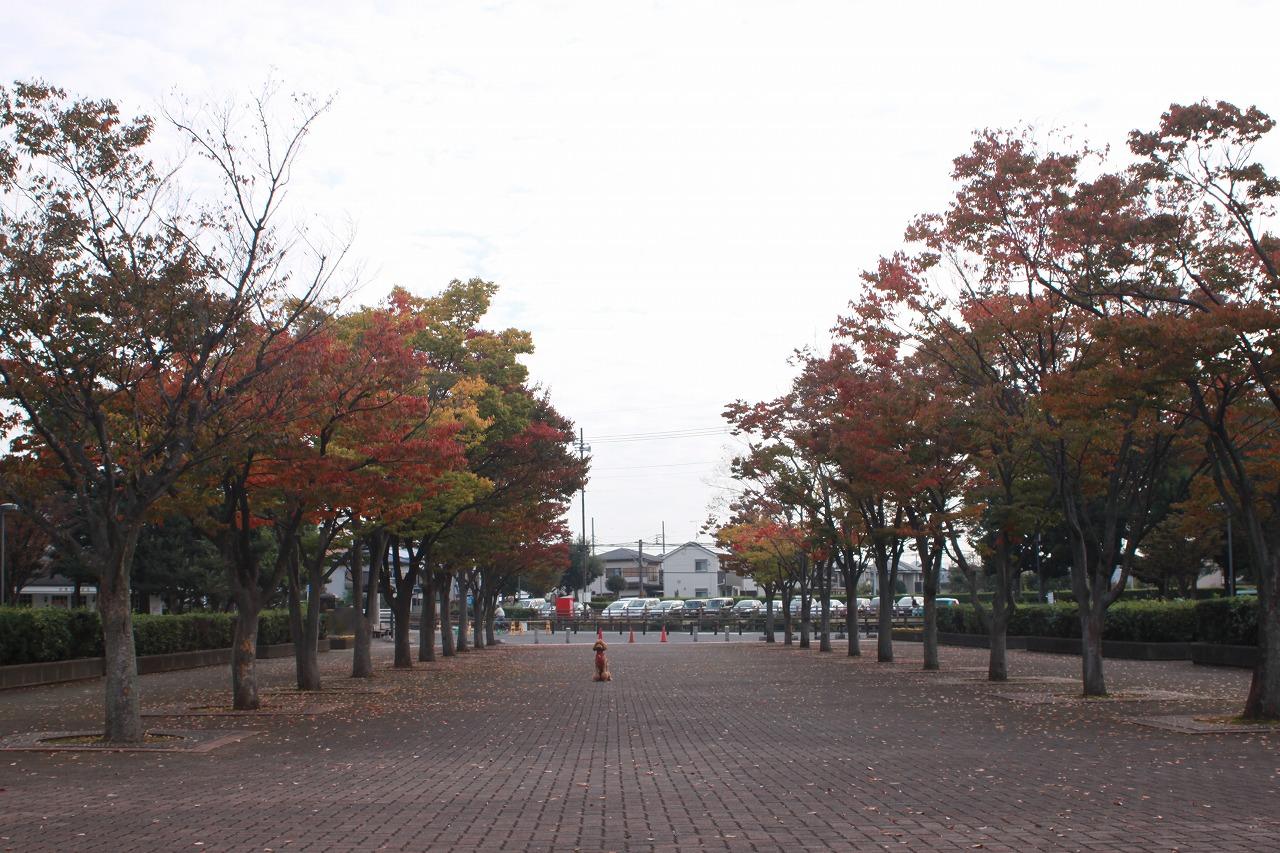 721b-IMG_3607.jpg