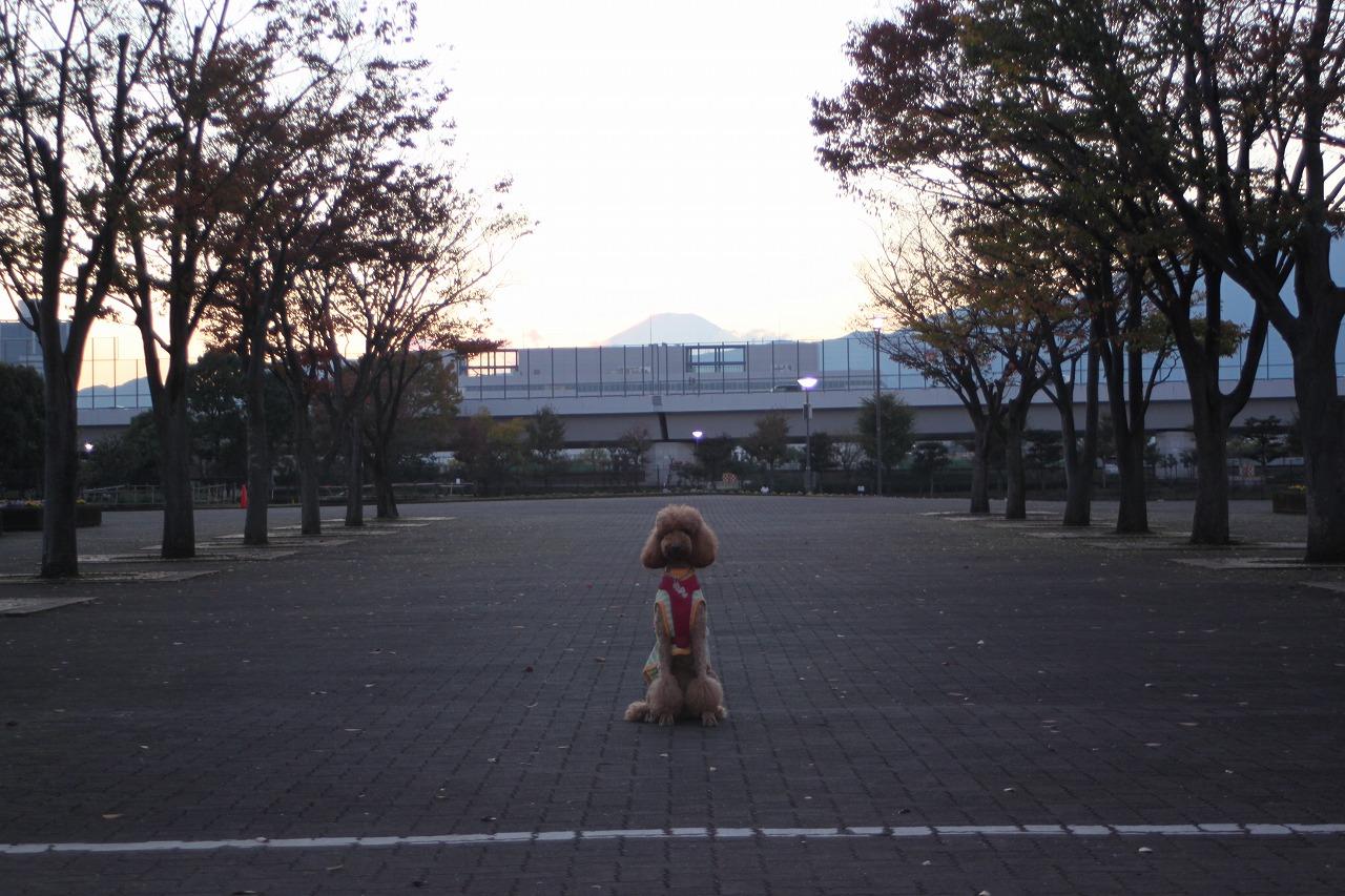 729b-IMG_4060.jpg