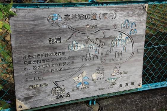 森林浴の道