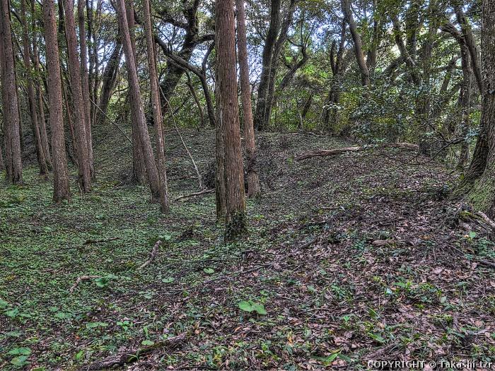 高山城跡(鹿児島)