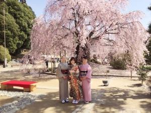 4-9桜まつり3人娘