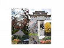 神奈川県小田原市 タキ歯科クリニックBlog-361
