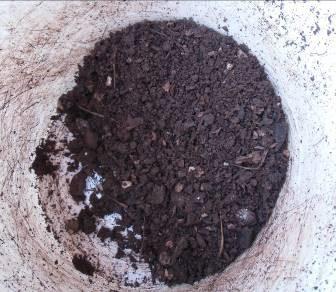 生ゴミ堆肥選別後
