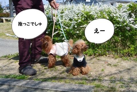 DSC_2704.jpg