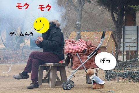IMG_2495.jpg