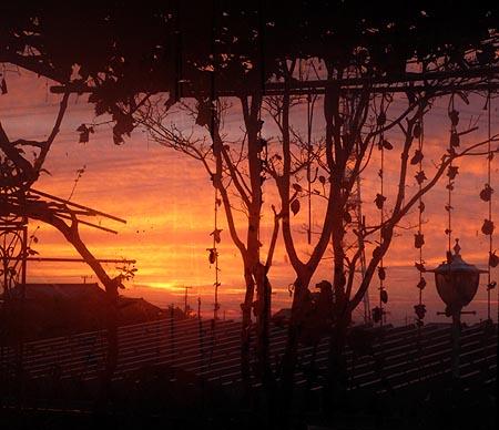 日の出前 1