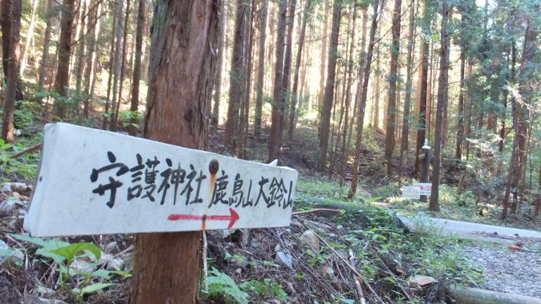 林道に出る 1