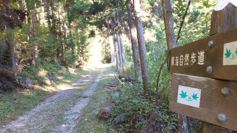 林道に出る 2