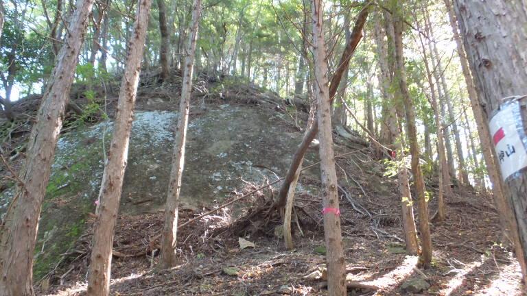 大きな岩のお出まし