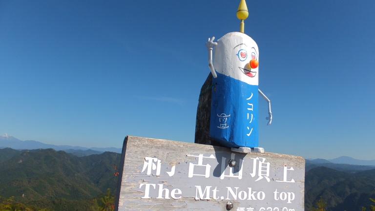山頂 ノコリン