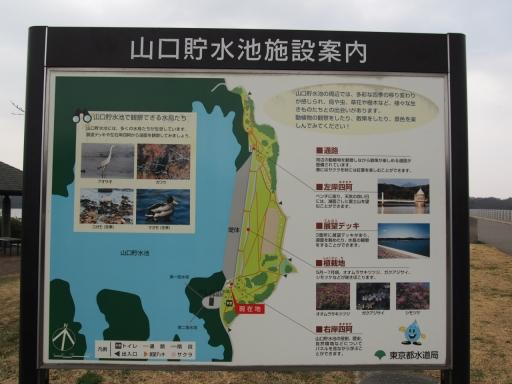 20160312・狭山湖へ2-05・大