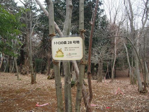 20160312・狭山湖へ空06