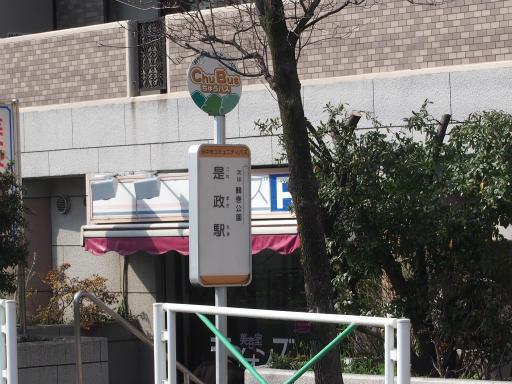 20160321・墓参りと桜1-08