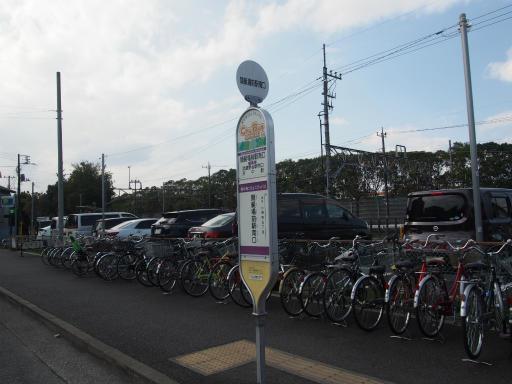 20160321・墓参りと桜2-02