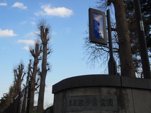 20160321・墓参りと桜3-10