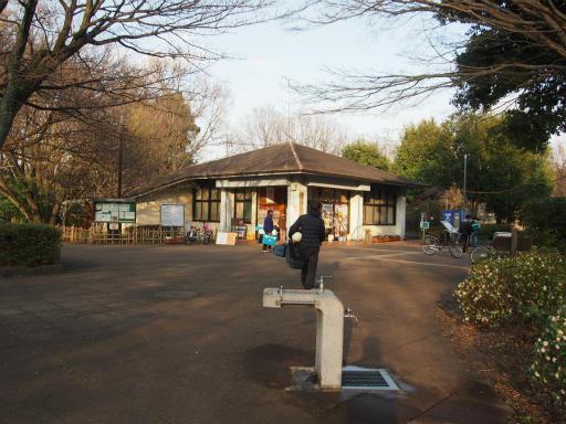 20160321・墓参りと桜3-24