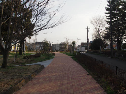 20160321・墓参りと桜4-01