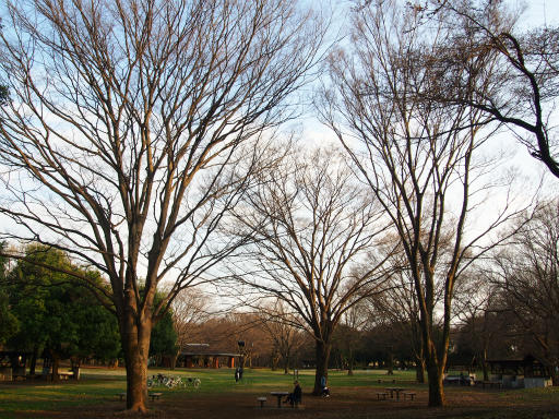 20160321・墓参りと桜4-07