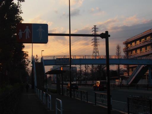 20160321・墓参りと桜4-18