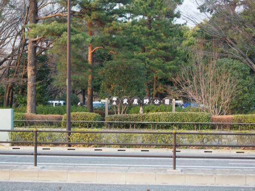 20160321・墓参りと桜4-14