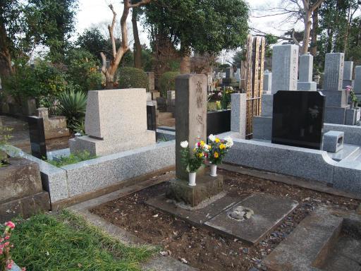 20160321・墓参りと桜4-23