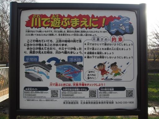 20160321・墓参りと桜ネオン18・武蔵野公園